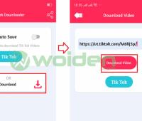 Aplikasi downlaod video tiktok