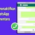 Matikan jaringan whatsapp saja