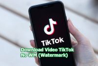 Download Video TikTok No WM (Watermark)