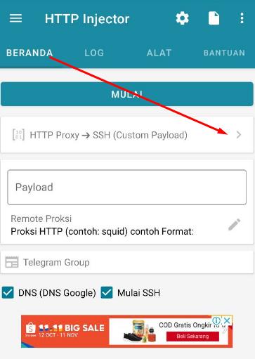 Cara Menggunakan V2Ray plugin for HTTP Injector
