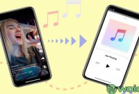 Tiktok Converter to MP3